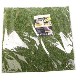 Repti-Zoo Natural Moss Back&Bottom - tło i podłoże z mchu 45x45cm