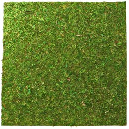 Repti-Zoo Natural Moss Back&Bottom - tło i podłoże z mchu 30x30cm